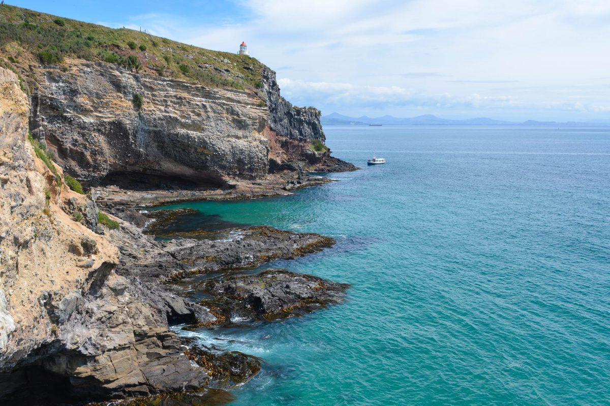 Der Leuchtturm am Taiaroa Head auf der Nordspitze der Otago Halbinsel wurde 1864 im Zuge des Otago Goldrausches errichtet, Neuseeland - © FRASHO / franks-travelbox