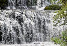 Der wohl bekannteste Wasserfall der Catlins im Süden von Neuseelands Südinsel ist der 20m hohe Sturz des Purakaunui Rivers - © FRASHO / franks-travelbox