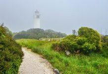 Die gut beschilderten Wanderwege auf Cape Foulwind führen entlang der Westküste von Neuseelands Südinsel zu einem schmucken Leuchtturm - © FRASHO / franks-travelbox