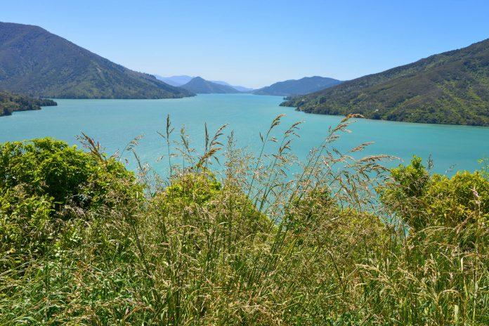 Die Inseln und Meeresarme der Marlborough Sounds im Norden der Südinsel gehören zu den faszinierendsten Landschaftsformen Neuseelands - © FRASHO / franks-travelbox