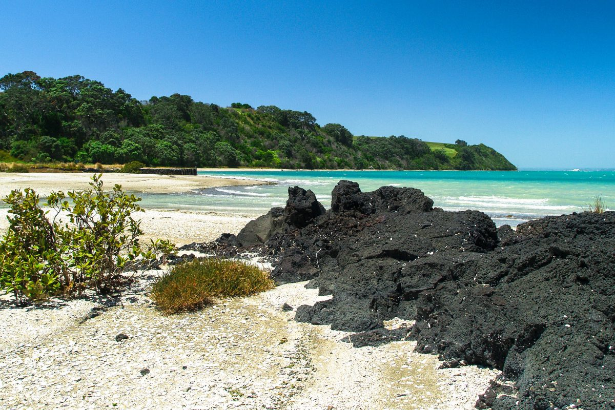 Die Islington Bay auf der Insel Rangitoto im Hauraki-Golf, Neuseeland - © Tomas Pavelka / Shutterstock
