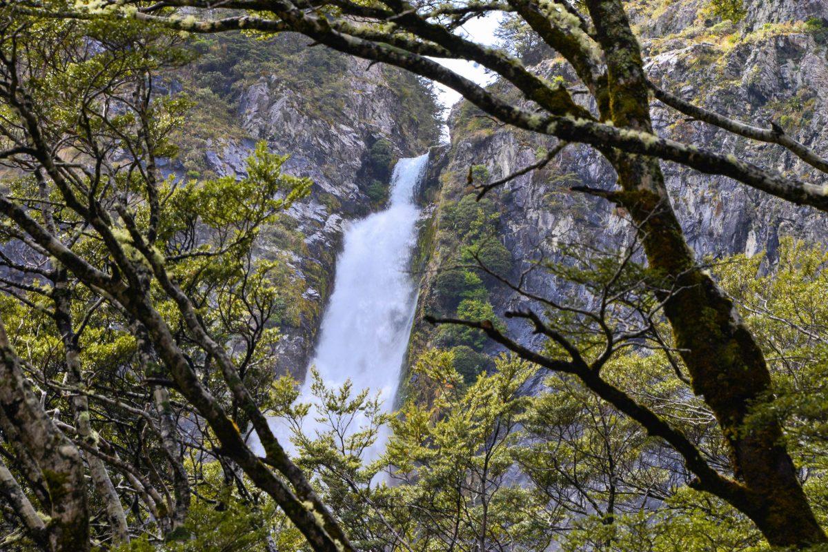 Die rauschenden Wassermassen der 131m hohen Devil's Punchbowl Falls im Arthur's Pass Nationalpark sind schon von weitem auszumachen, Neuseeland - © FRASHO / franks-travelbox