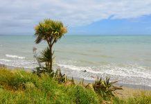 Die traumhafte, 45km lange Golden Bay kann hinter dem Takaka Hill meist nahezu allein genossen werden, Neuseeland - © FRASHO / franks-travelbox