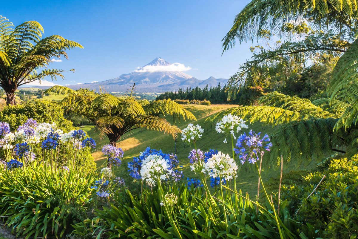 Die Wanderwege im Egmont Nationalpark in Neuseeland können im Zuge von einstündigen Spaziergängen oder mehrtägigen Bergtouren erforscht werden - © patjo / Shutterstock