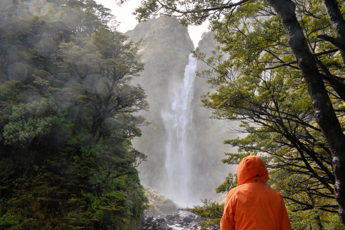 Eine kurze Wanderung führt durch üppige Wälder zu den Devil's Punchbowl Falls, ideal, um sich am Great Alpine Highway die Beine zu vertreten, Neuseeland - © FRASHO / franks-travelbox