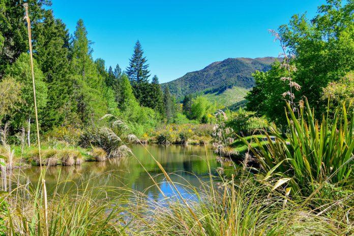 Der Hanmer Springs Nationalpark auf der Südinsel von Neuseeland ist nur einen Katzensprung von Christchurch entfernt - © FRASHO / franks-travelbox