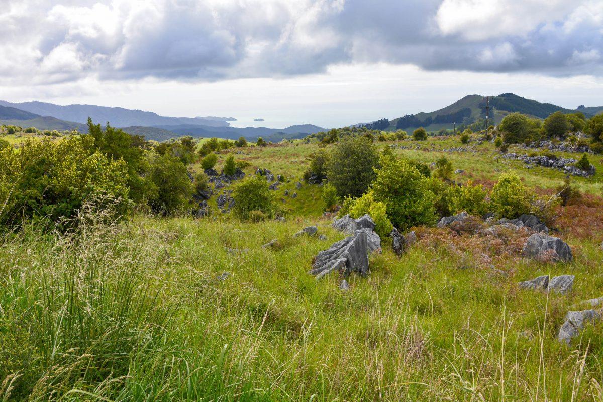 In der Golden Bay im Norden der Südinsel ankerte einst Abel Tasman, als er im Jahr 1642 als erster Europäer Neuseeland entdeckte - © FRASHO / franks-travelbox