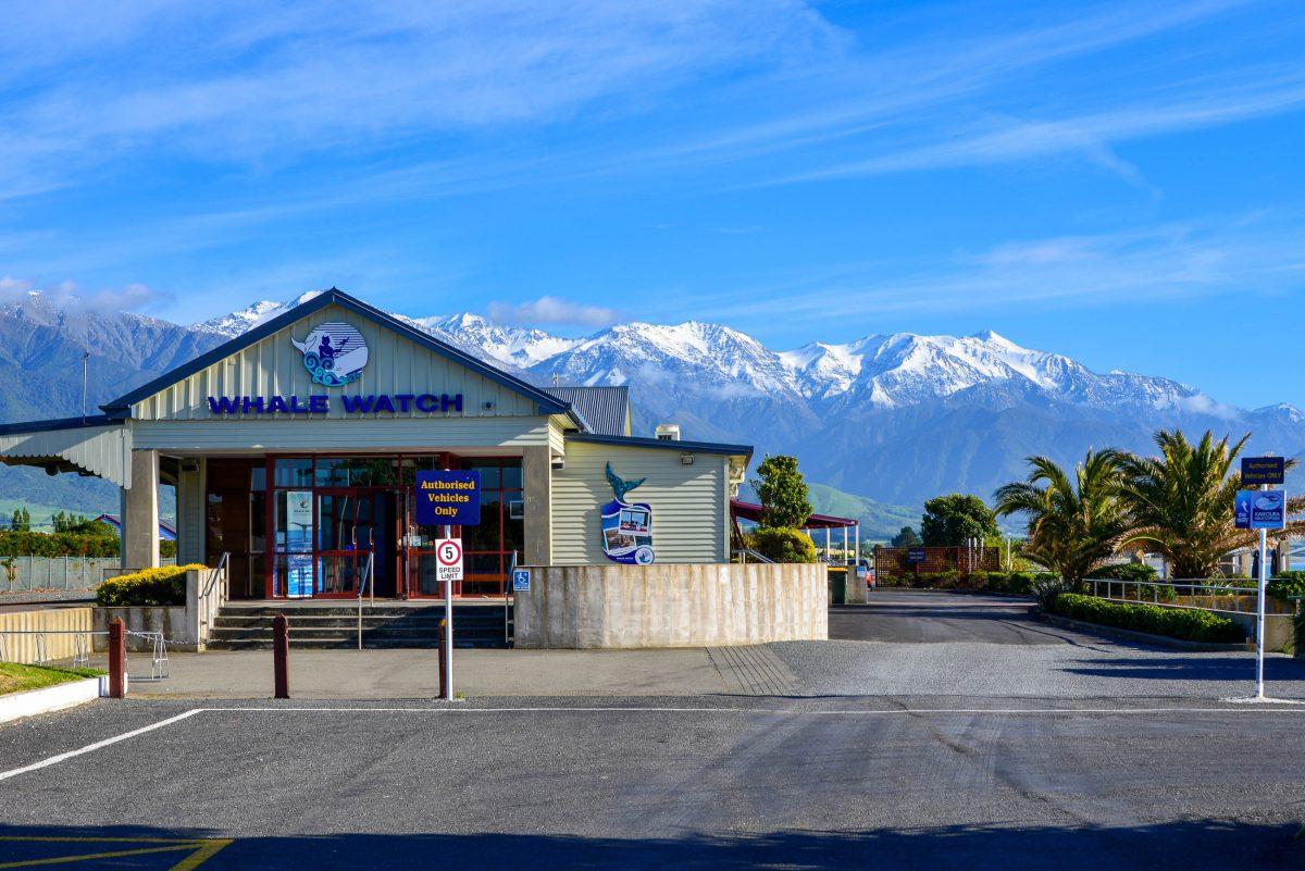 """""""Whale Watch"""" in Kaikoura, Neuseeland, wird hochprofessionell von den Maori betrieben und ist im internationalen Vergleich immer noch äußerst preisgünstig - © FRASHO / franks-travelbox"""
