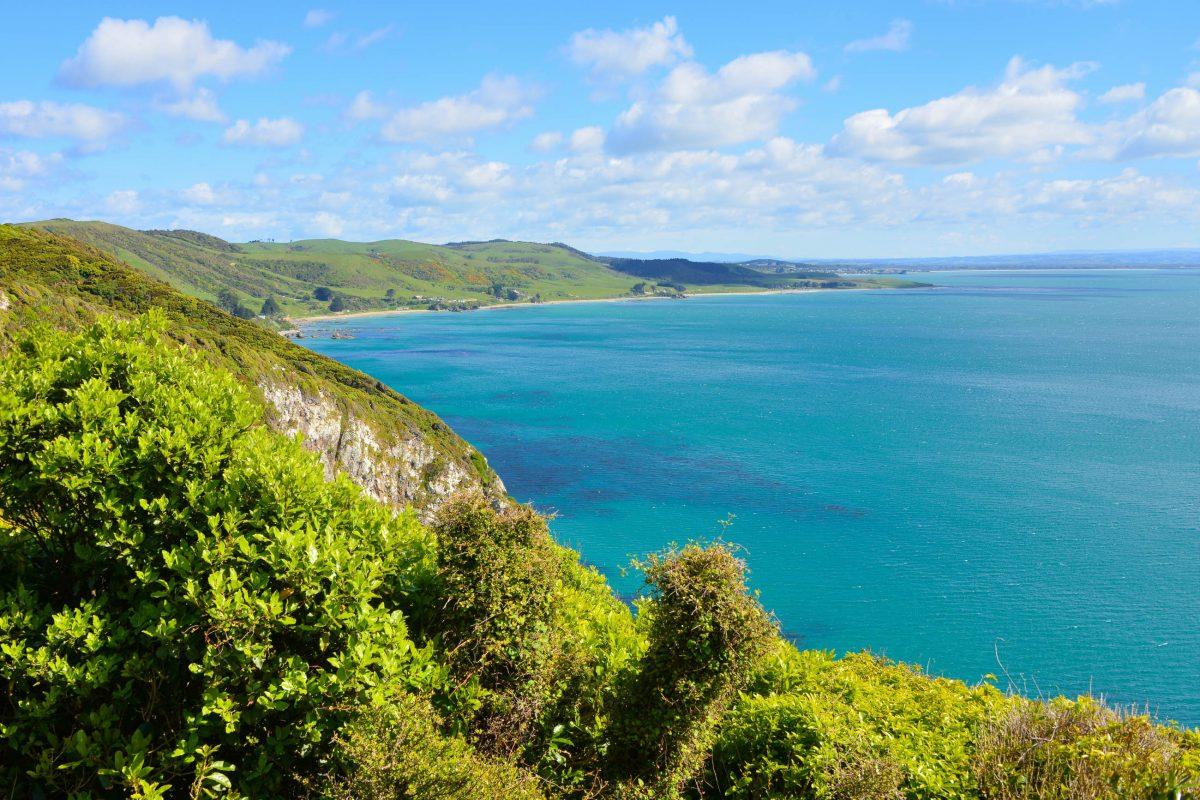 Die prachtvolle Szenerie rund um den Nugget Point ist nicht nur für menschliche Besucher attraktiv, Neuseeland - © FRASHO / franks-travelbox