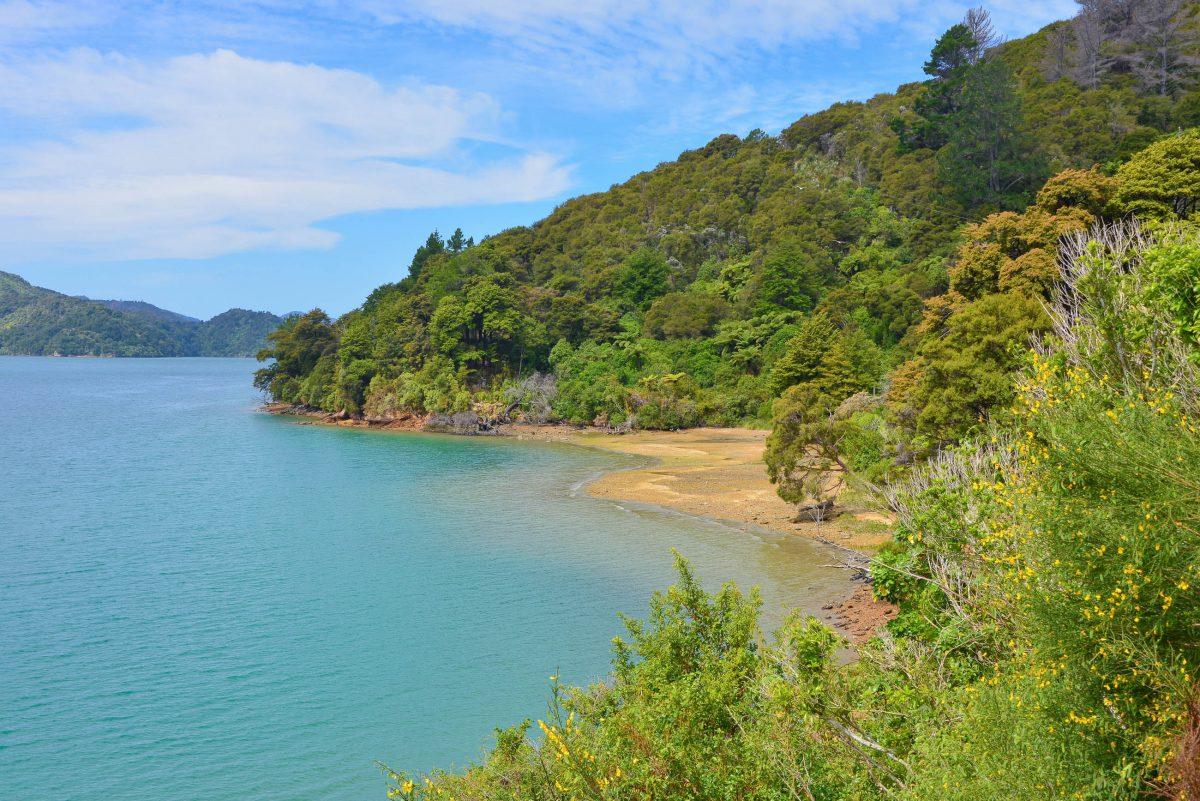 Mit dem Postboot gelangen auch Touristen in die entlegensten Winkel des Insel- und Buchten-Labyrinths des Pelorus Sound, Neuseeland - © FRASHO / franks-travelbox
