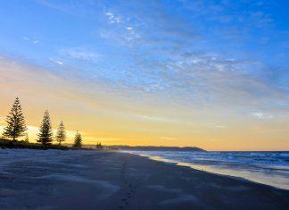 Mit Wiesen und Bäumen an der Küste und ruhigem Meer ist kilometerlange Ohope Beach auf der Nordinsel der beliebteste Strand Neuseelands - © FRASHO / franks-travelbox