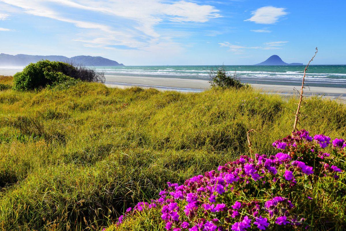 Ohope Beach ist mit romantischen Sonnenuntergängen und idyllischer Landschaft der perfekte Ort für einen Badeurlaub auf der Nordinsel von Neuseeland - © FRASHO / franks-travelbox