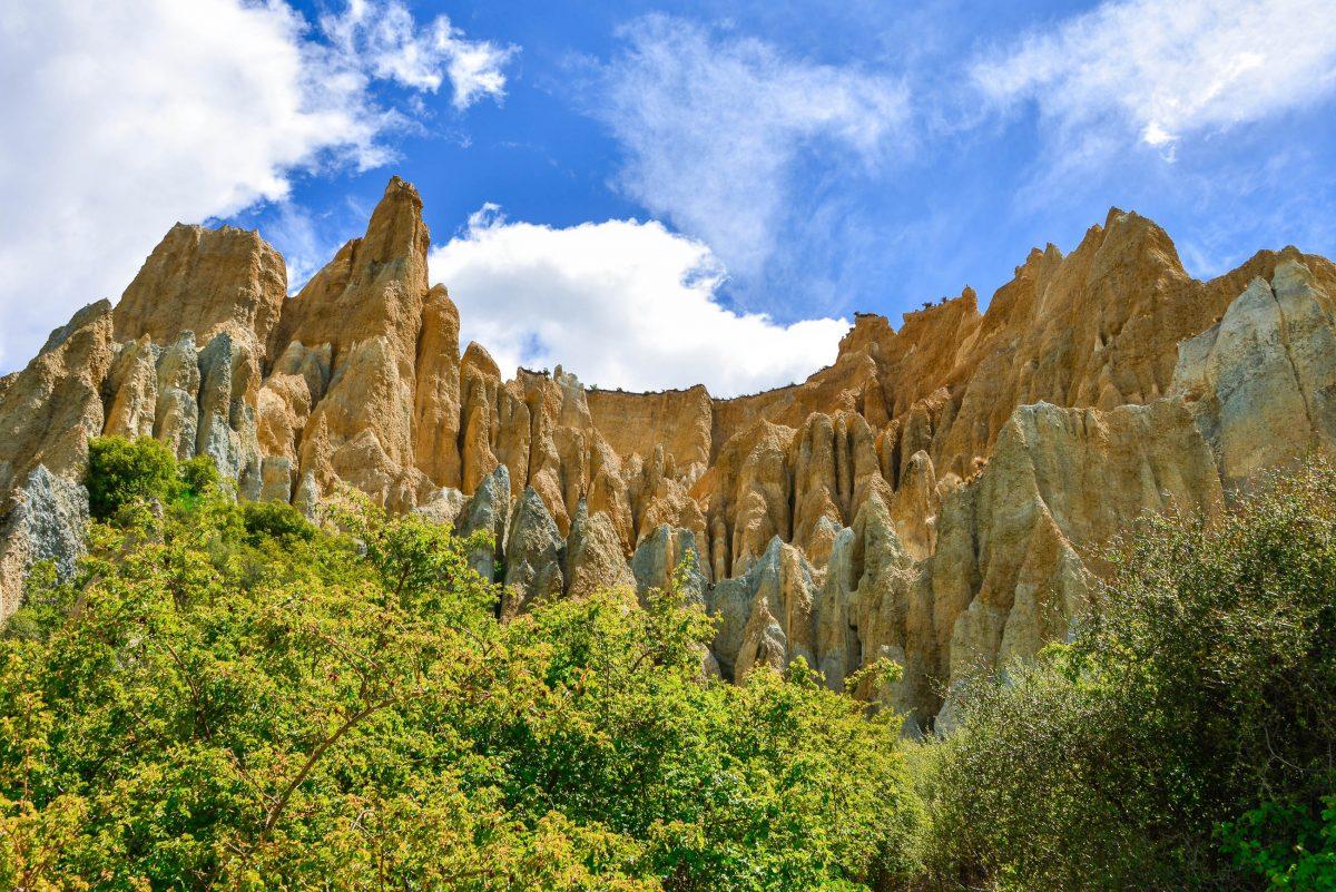 In Reiseführern finden die bizarren Clay Cliffs rund 10km von Omarama entfernt kaum Beachtung, Neuseeland - © FRASHO / franks-travelbox