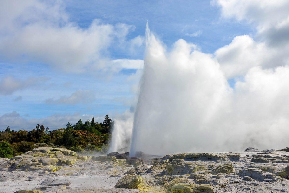 Der Geysir Pohutu ist der größte Geysir der südlichen Hemisphäre und die berühmteste Attraktion der Te Puia Thermalzone in Neuseeland - © FRASHO / franks-travelbox