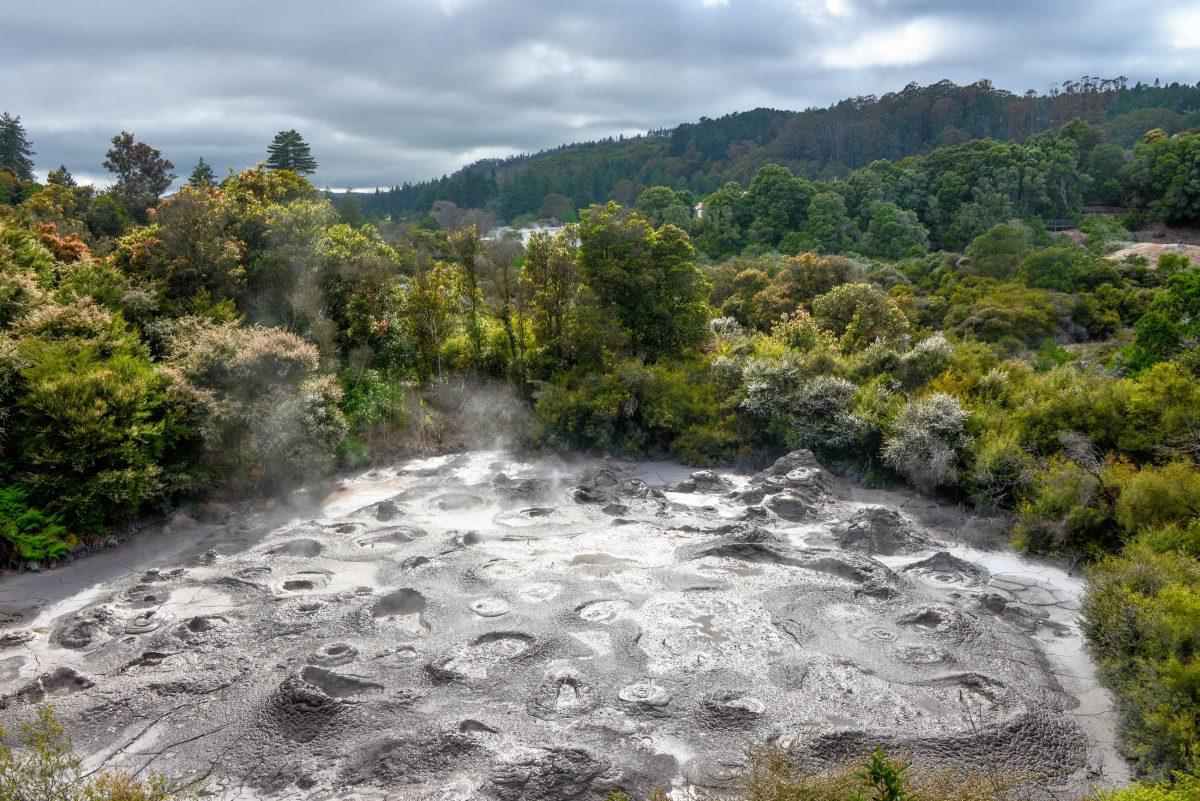 """Der größte Mud Pool der Te Puia Thermalzone in Neuseeland ist der """"Nga Mokai a Koko"""" mit einer Tiefe von 6-10 Metern - © FRASHO / franks-travelbox"""