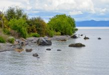 Als größter See Neuseelands verwandelt sich der Lake Taupo im Sommer in eine beliebte Destination für Bade-Urlauber - © FRASHO / franks-travelbox