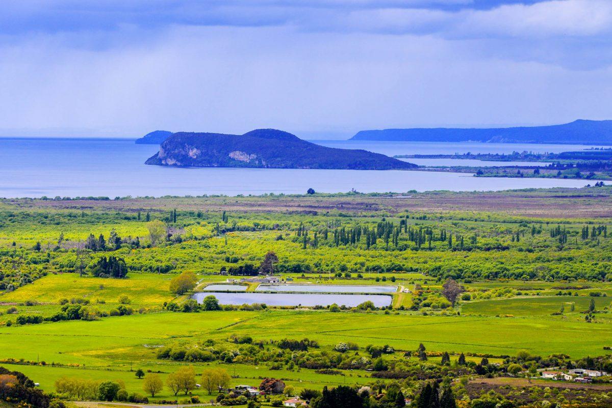 Eingebettet in ein geothermales Gebiet lädt auch die Umgebung des Lake Taupo zum Entdecken ein, Neuseeland - © FRASHO / franks-travelbox