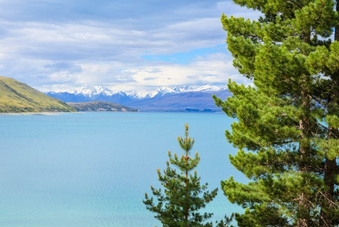 Der Lake Tekapo im Zentrum der Südinsel zählt aufgrund seiner malerischen Lage am Fuß der Neuseeländischen Alpen zu den schönsten Seen Neuseelands - © FRASHO / franks-travelbox