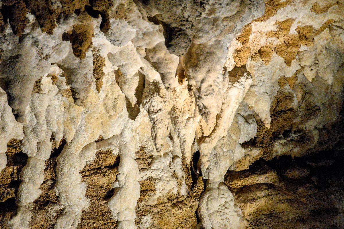 Der rund zweistündige Weg durch die Ruakuri Cave führt durch Stalagmiten und Stalaktiten und vorbei an stockfinsteren Löchern und Schluchten, Neuseeland - © FRASHO / franks-travelbox