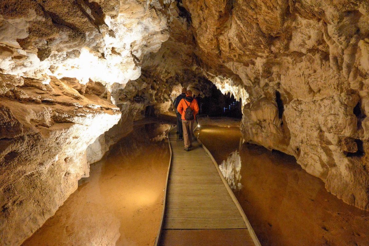 Die Waitomo Caves werden seit 1989 von den ortsansässigen Maori verwaltet, die seither auch an den Einnahmen beteiligt sind, Neuseeland - © FRASHO / franks-travelbox