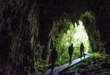 In den Glowworm Caves findet sich neben Tropfsteinformationen und Kathedralen ähnlichen Hallen der größte unterirdische Sternenhimmel der Welt, Neuseeland - © FRASHO / franks-travelbox
