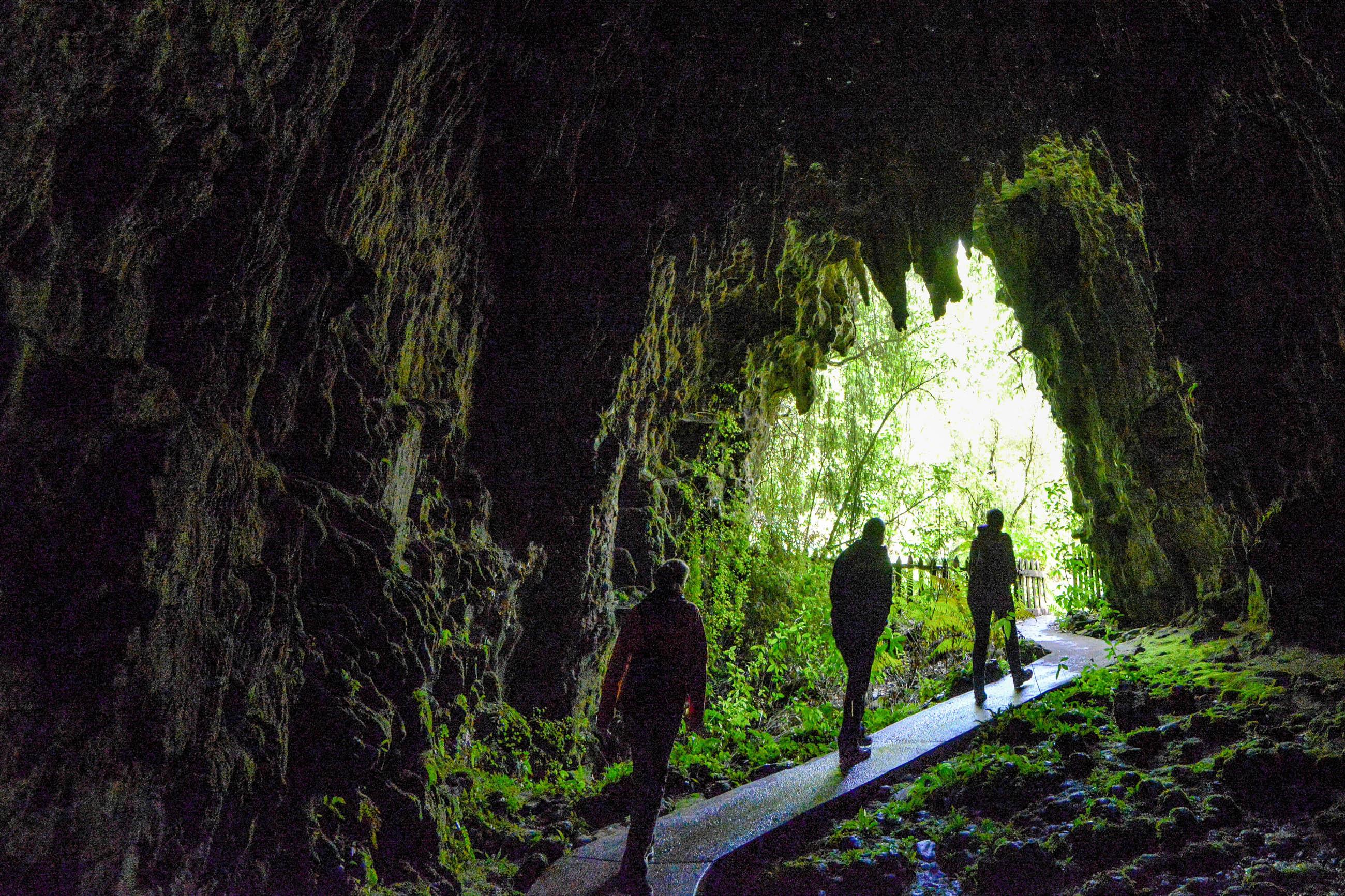glowworm caves im waitomo tal neuseeland franks travelbox. Black Bedroom Furniture Sets. Home Design Ideas