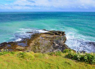 """Wellengang in der Curio Bay, einer der Highlights von """"The Catlins"""" im Süden von Neuseeland - © FRASHO / franks-travelbox"""