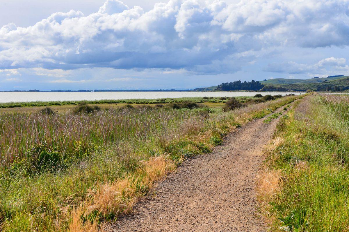 Zahlreiche Wanderwege bringen Touristen die Banks Halbinsel näher, allen voran der privat geführte Banks Peninsula Track, Neuseeland - © FRASHO / franks-travelbox