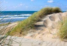 Dünenlandschaft an der Nordseeküste der Niederlande - © natas / Shutterstock