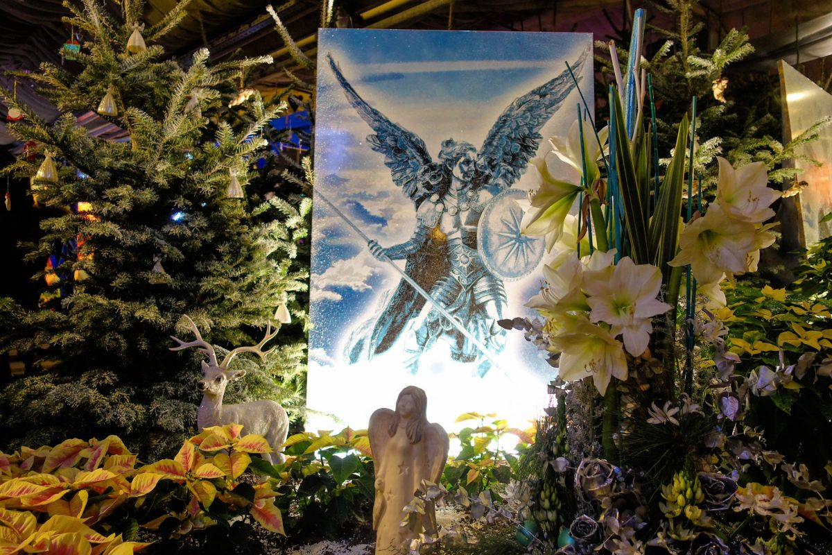 Blumenarrangements aus tausenden Weihnachtssternen, Engeln und Lichterketten versetzen die Besucher in den Blumengärten von Hirschstetten in Weihnachtsstimmung, Wien, Österreich - © Lila Pharao / franks-travelbox