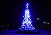Gleich am Eingang zum Adventmarkt in den Blumengärten Hirschstetten, Wien, werden Besucher von einem malerisch beleuchteten Weihnachtsbaum begrüßt, Österreich - © Lila Pharao / franks-travelbox