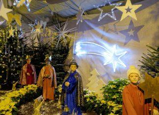 Mit seinen weihnachtlichen Blumenarrangements ist der Adventmarkt in den Blumengärten von Hirschstetten in Wien Donaustadt ein ganz besonderer Ausflugstipp für die Vorweihnachtszeit, Österreich - © Lila Pharao / franks-travelbox
