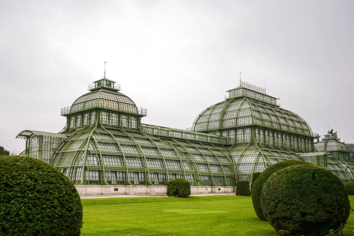 Das Palmenhaus in Schönbrunn ist das größte Palmenhaus Europas und beherbergt rund 4.500 Pflanzenarten aus aller Welt, Wien, Österreich - © James Camel / franks-travelbox