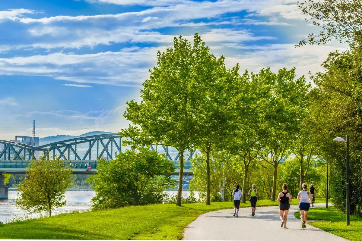 Im Frühling und Herbst sind auf der idyllischen Donauinsel in Wien fast rund um die Uhr Jogger, Nordic Walker, Skater und Radfahrer anzutreffen, Österreich - © Bravavod161 / Shutterstock