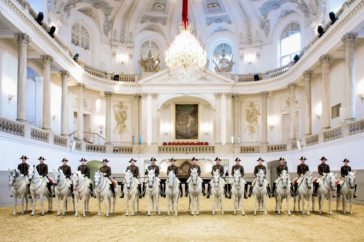 In der Spanischen Hofreitschule werden ausschließlich Lipizzaner ausgebildet, die gemeinsam mit ihren Reitern Reitkunst in höchster Vollendung präsentieren, Österreich - © Stefan Seelig/Span.Hofreitschule