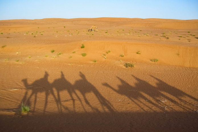 Abendliche Schattenspiele in der Ramlat al Wahiba (Wahiba Sands) im Oman - © FRASHO / franks-travelbox