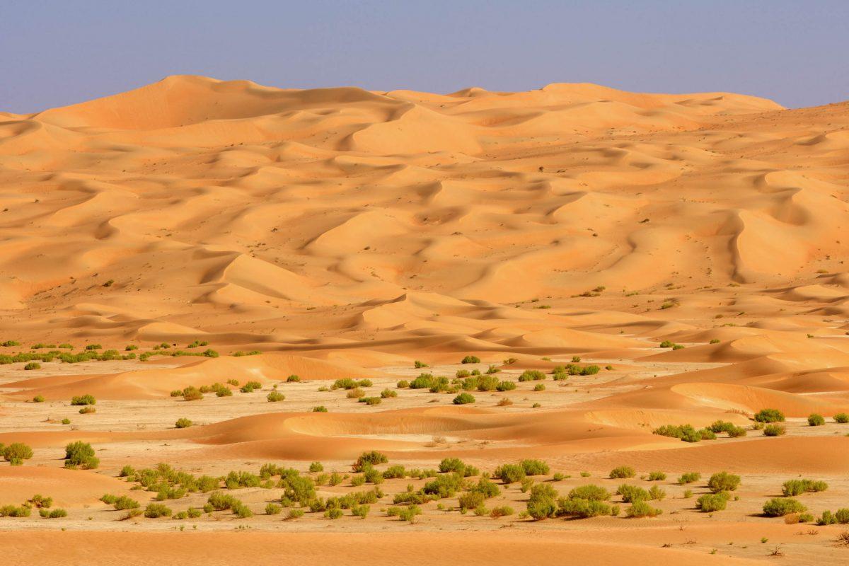 """Die gewaltige Sandwüste im südlichen Oman macht ihrem Namen """"Leeres Viertel"""" alle Ehre, denn in der Rub al-Khali lebt tatsächlich kaum eine Menschenseele - © David Steele / Shutterstock"""