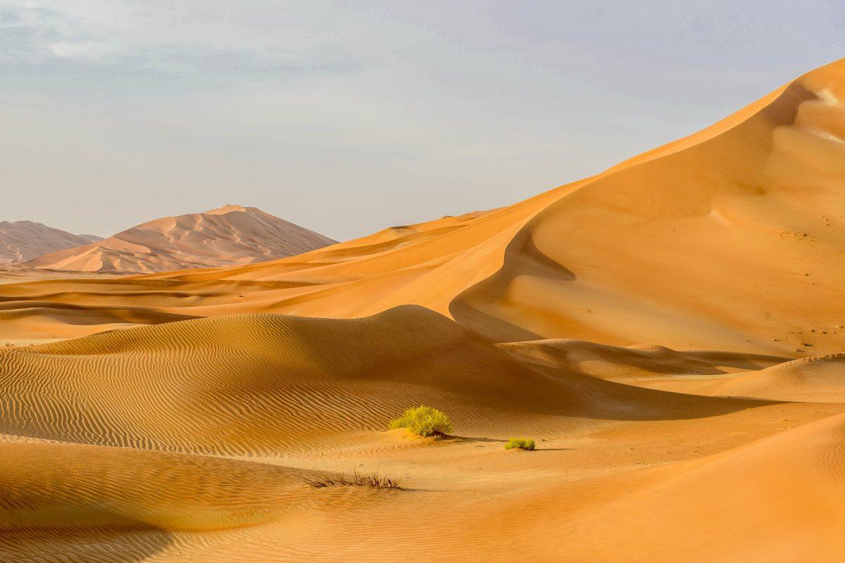 Die scheinbar endlosen Sanddünen der Wüste Rub al-Khali erreichen im Oman eine Höhe von über 200 Metern - © KamilloK / Shutterstock