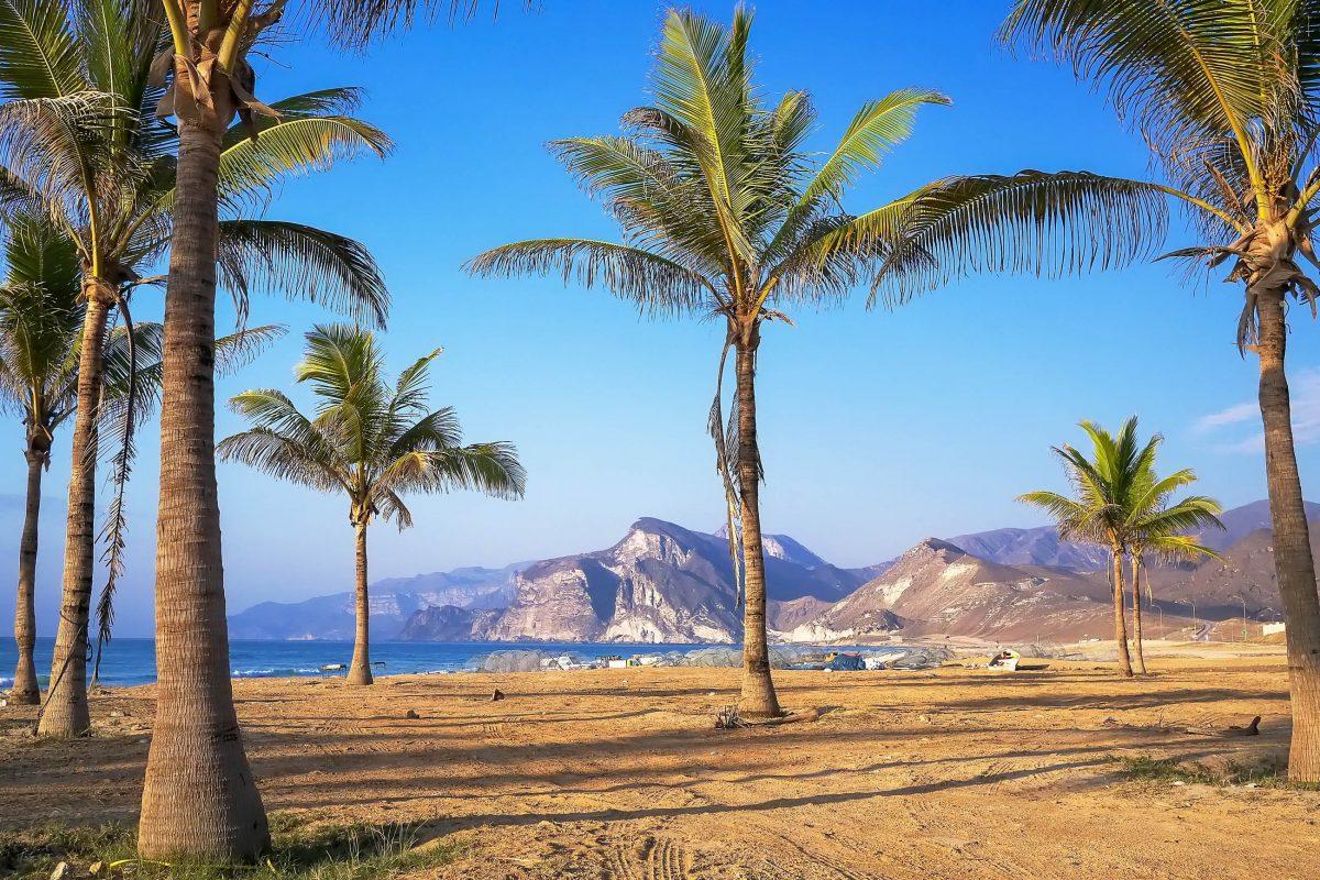 Künstlich gepflanzte Palmen komplettieren die fantastische Urlaubsszenerie, die sich am Strand von Mughsayl auftut, Oman - © Ondrej Vavra / Shutterstock