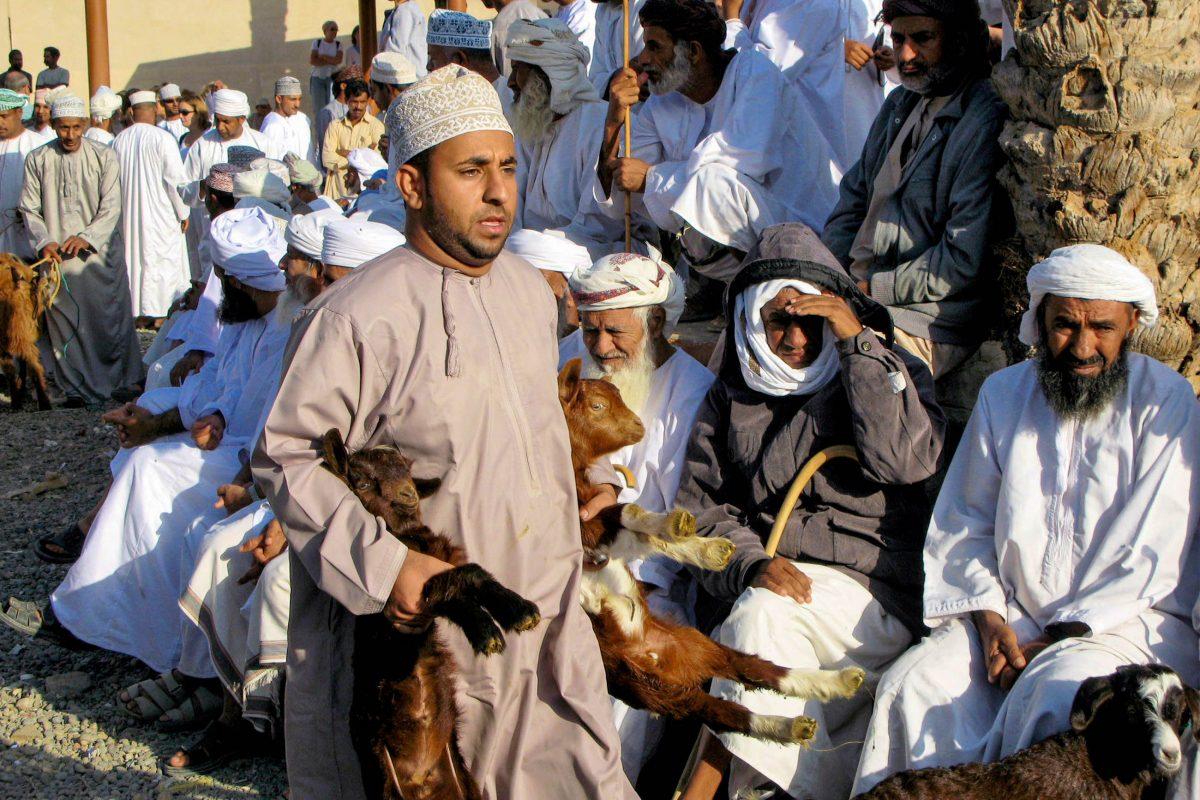 Am Tiermarkt von Nizwa, Oman, wird mit dem lieben Vieh alles andere als zimperlich umgegangen - © ChameleonsEye / Shutterstock