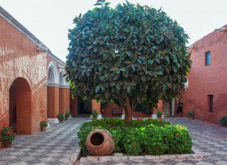 Die malerischen Sträßchen im Kloster Santa Catalina erweitern sich immer wieder zu lauschigen Innenhöfen, Arequipa, Peru - © flog / franks-travelbox