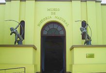 Das Museo de Historia Natural in Lima ist das bedeutendste Naturkundemuseum von Peru und informiert seine Besucher über die Botanik, Zoologie und Ökologie des Landes - © Monarcaxx CC BY 2.0/Wiki