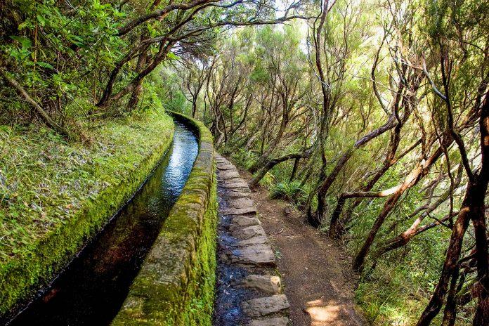 """Einer der """"Levadas"""" in Madeira (künstlich angelegte in Beton eingefasste Rinnsale), die zu Bewässerungszwecken die gesamte Insel wie ein Netz überspannen, Portugal - © sokolovsky / Shutterstock"""