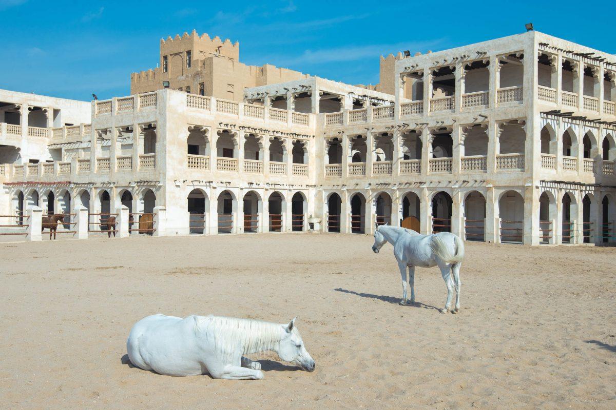 Für die Pferde, die am Souq Waqif zu kaufen sind, wurden eigene exquisite Stallungen errichtet, Doha, Katar / Qatar - © FRASHO / franks-travelbox