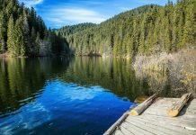 Der Lacul Roşu in Rumänien hat seinen Namen Eisenoxiden zu verdanken, die sein Wasser manchmal rötlich schimmern lassen - © Angyalosi Beata / Shutterstock
