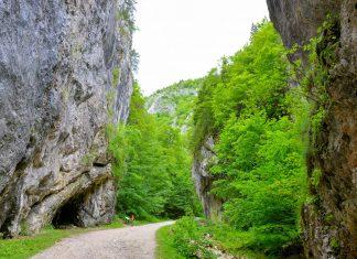 Der Nationalpark Piatra Craiului im zentralen Rumänien beherbergt einen der mächtigsten Gebirgskämme Europas und kann auf über 30 Wanderwegen erforscht werden - © FRASHO / franks-travelbox