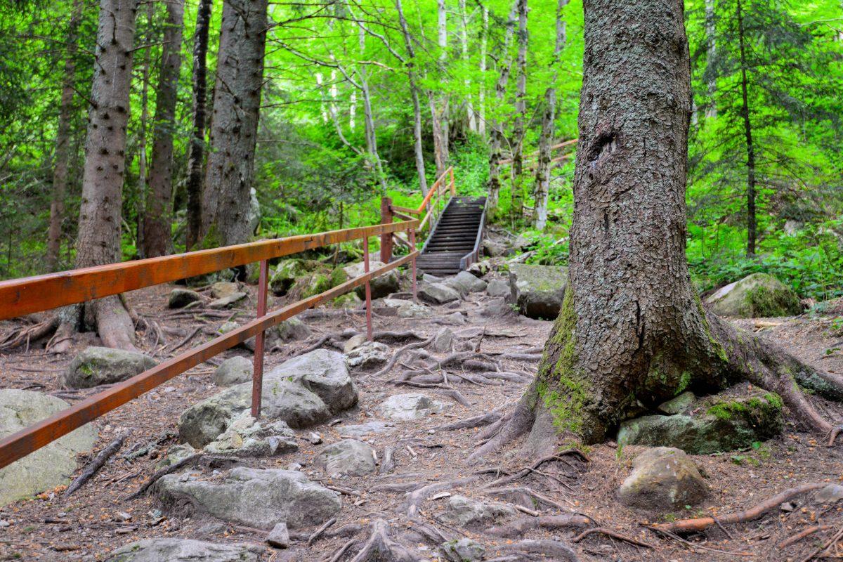 Die Wanderwege durch den Nationalpark Retezat in Rumänien sind alle touristisch gut erschlossen und ausgezeichnet beschildert - © FRASHO / franks-travelbox