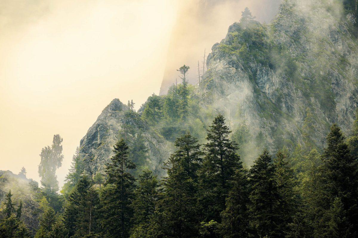 In den steilen Felsen, die die Bicaz-Klamm im Nordosten von Rumänien begrenzen, verbergen sich rund 120 Klettersteige - © Peter Gudella / Shutterstock