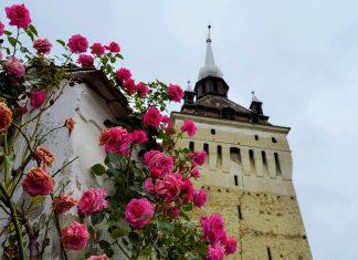Die Wehrkirche von Saschiz in Transsilvanien, heute Weltkulturerbe, stammt aus der Zeit der Türkenkriege in Rumänien - © FRASHO / franks-travelbox