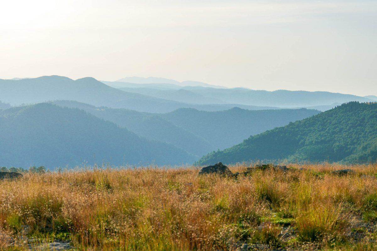 Über karge Vegetation aus Gras und Geröll schweift der Blick von der Panoramastraße Transalpina über bläulich schimmernde Bergketten in schier unendliche Weiten, Rumänien - © FRASHO / franks-travelbox